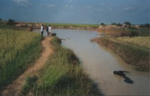 Projet Smack et Poy Char (Cambodge 2004)